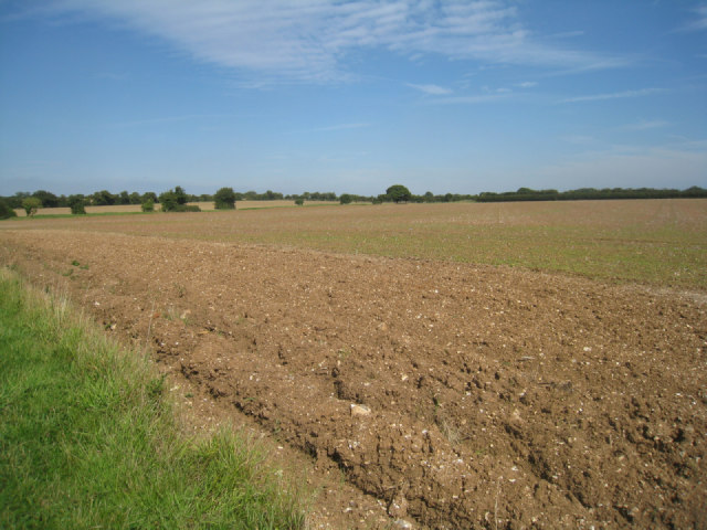 Fields near Wootton Close