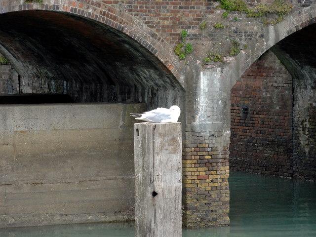 Folkestone, Inner Harbour