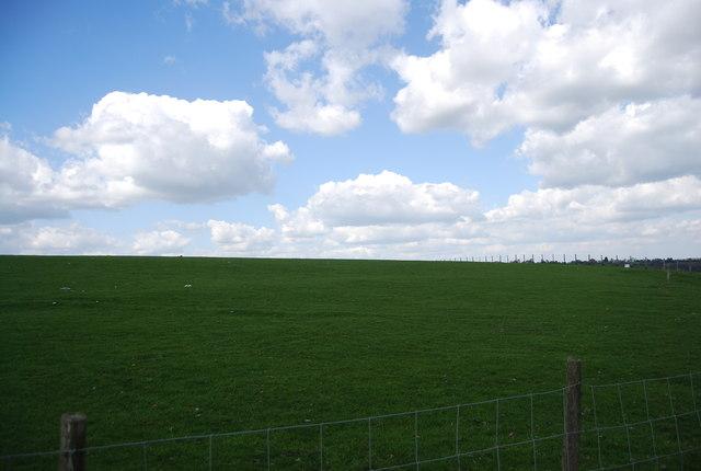 Field north of Brook Farm