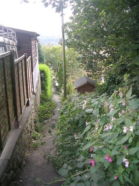 Footpath - Welwyn Drive