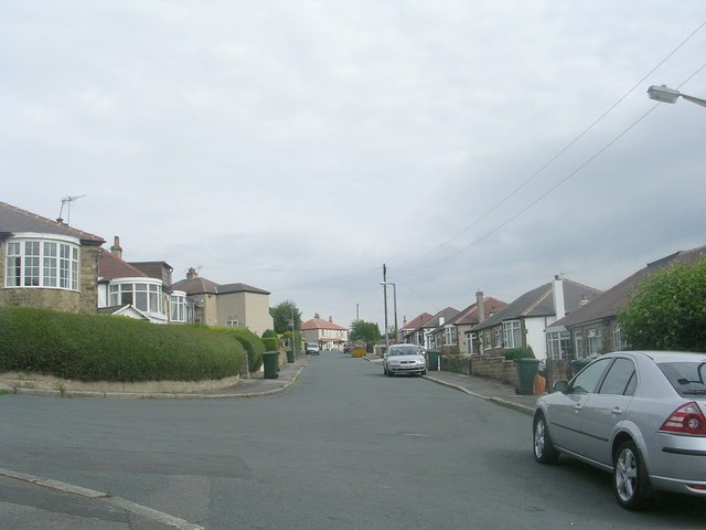Welwyn Drive - looking towards Maude Avenue