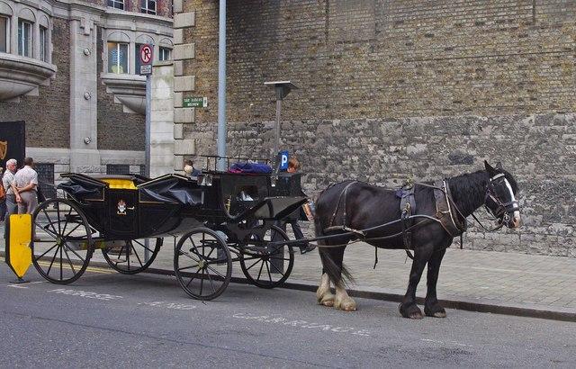 Horse Drawn Carriage Bellevue Dublin 169 P L Chadwick Cc