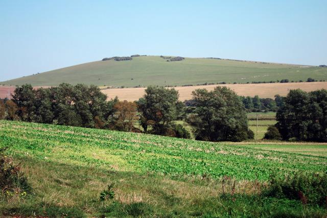 Farmland near Rodmell