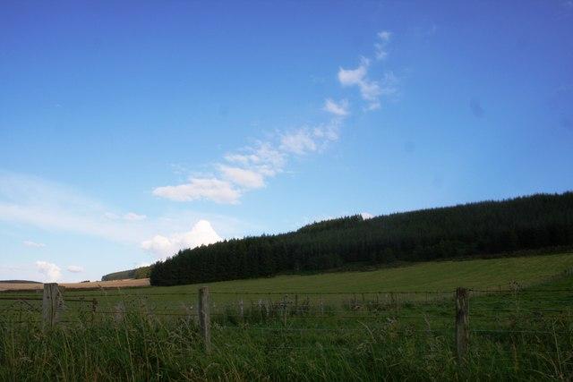 Fields by Corskie