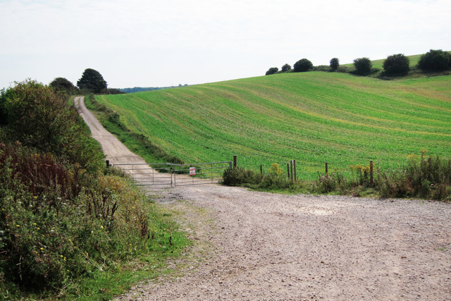 Farm track by Newhaven Road