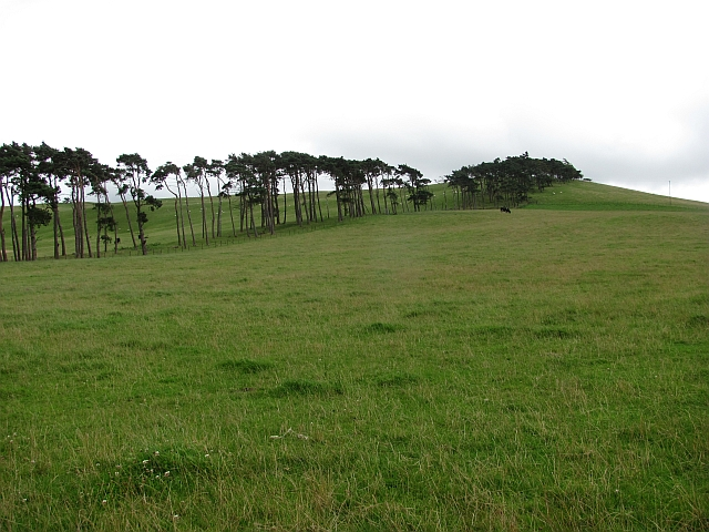 Parkgatestone Hill