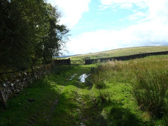 Gate leading onto David's Hill