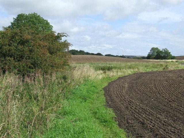 Public footpath near High Moorsley