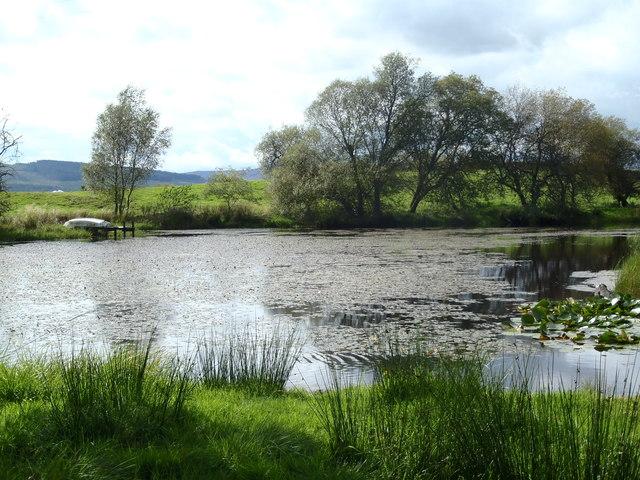 Dam near Ironmacannie Bridge