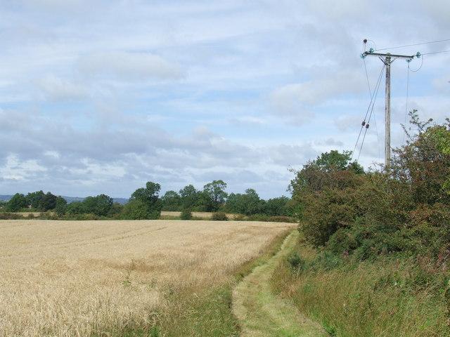 Public footpath near West Rainton