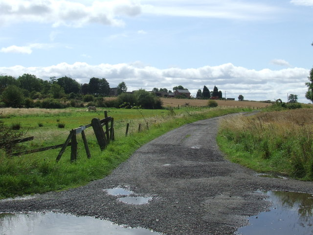 Farm track near West Rainton