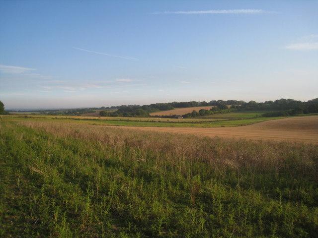 Farmland south of Hannington