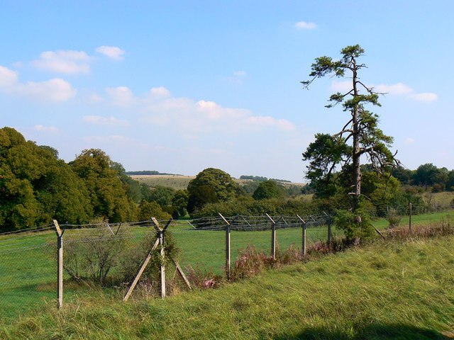 View east from St Giles' Churchyard, Imber