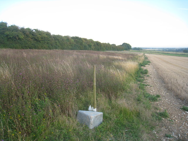 Wide field margin