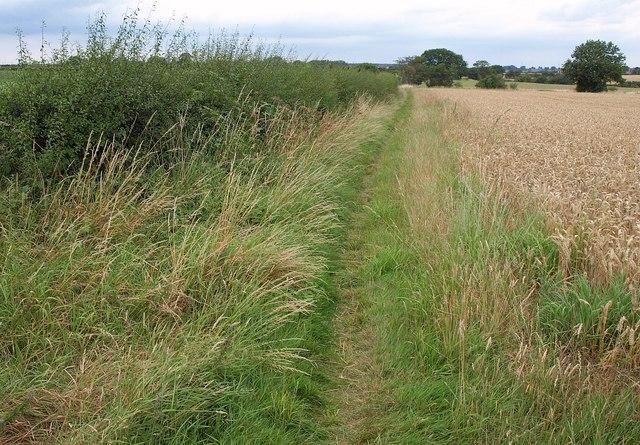 Path to Barwick in Elmet