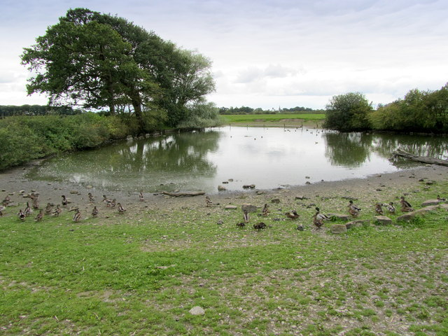 Duck Pond opposite Pilling Hall