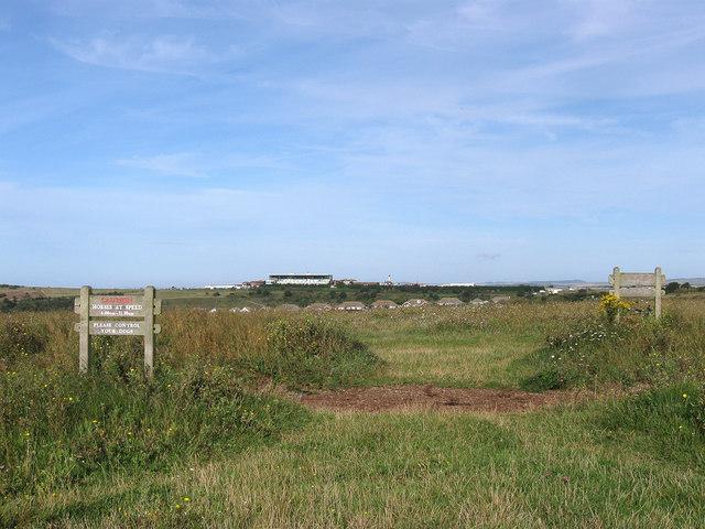Gallops near Brighton Racecourse