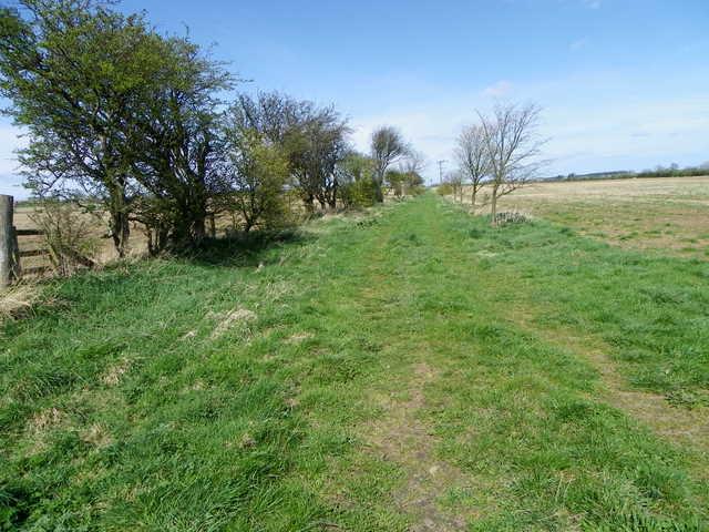 Footpath near Linton
