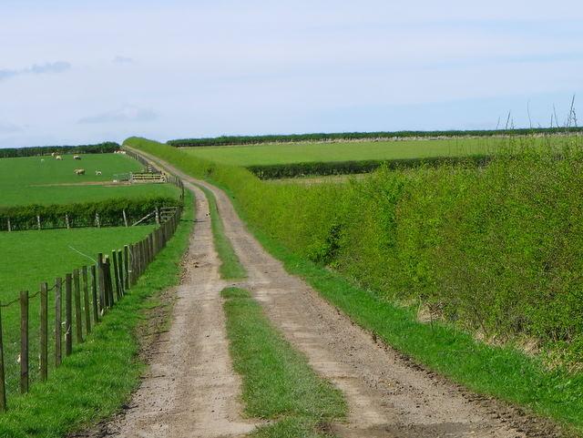 Footpath near Widdrington