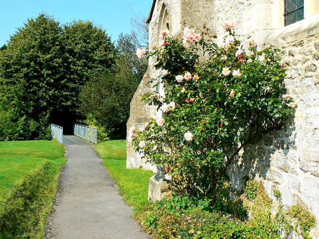 Roses by the Church of All Saints, West Lavington