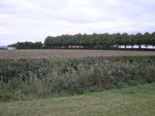 Rugby-Ashlawn Road