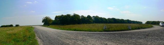 On the Plain, near Gore Cross