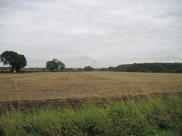 Harvested  fields  Hagg  Wood  to  right.