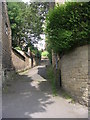 SE1538 : Steps leading up from Cliffe Terrace by Betty Longbottom