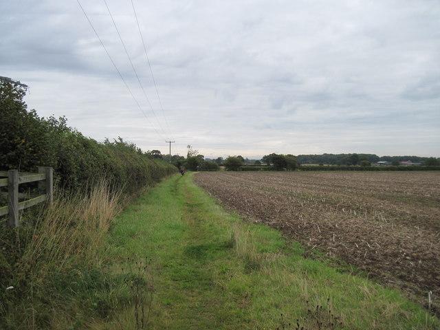 Ebor  Way  towards  Copmanthorpe