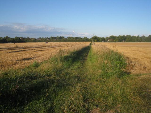 Path to Pardown