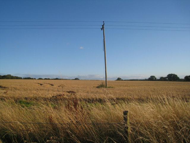 Fields near Itchen Row