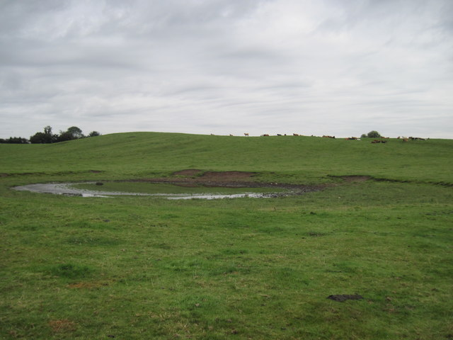 Large  field  Pond