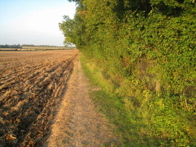 Field margin path
