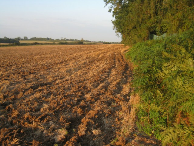 Harvested & ploughed
