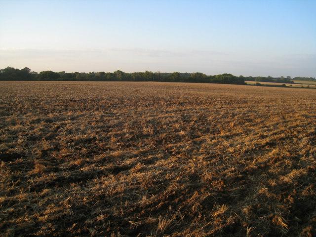 Plough farmland