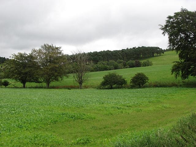 Farmland, Unthank