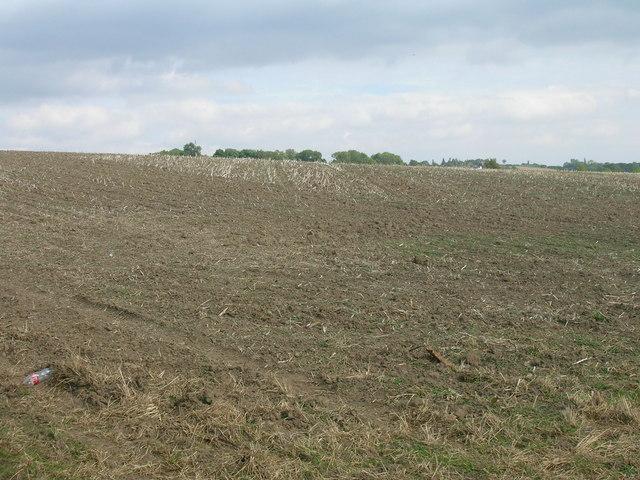 Farmland off Worry Goose Lane