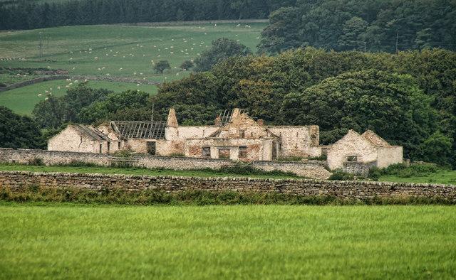 Raby Moor House