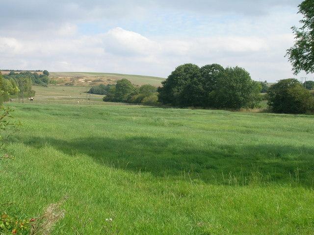 Farmland near Whiston