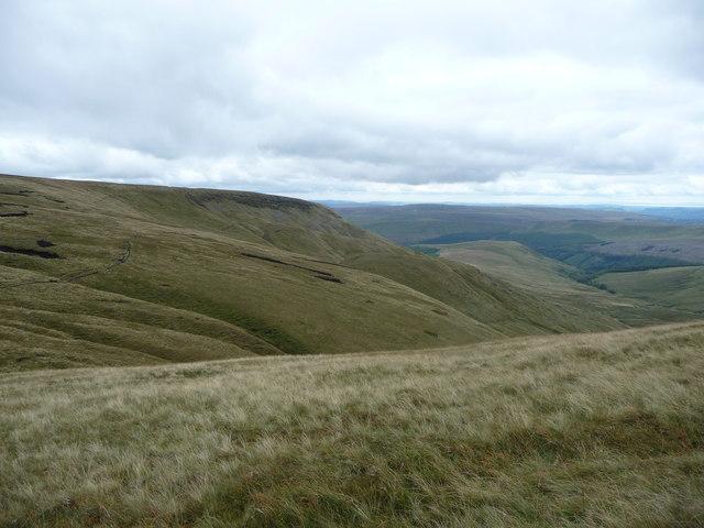 Grassland near Blaen y Glyn