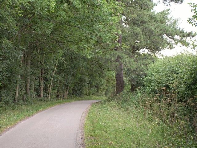 Lane along Becca Banks