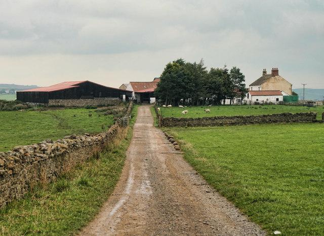 Bail Hill