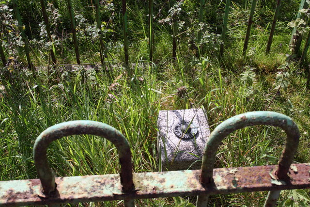 Benchmark block in railing enclosure beside Skipton Road