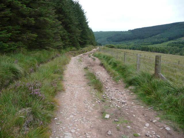 Part of the Taff Trail next to Taf Fechan Forest
