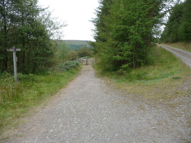 Part of the Taff Trail in Taf Fechan Forest