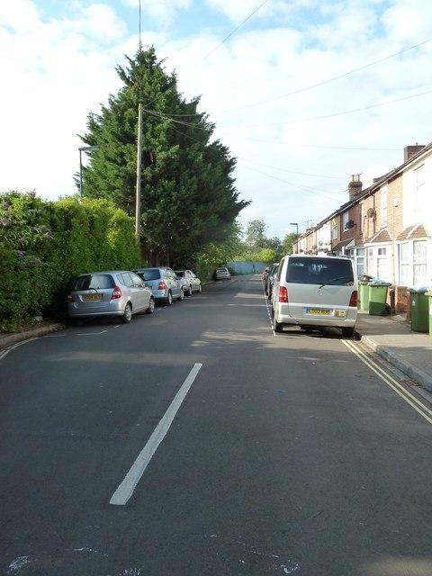 Summer in Hartington Road