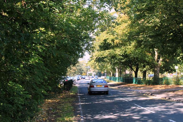 2011 : Rodway Hill, Mangotsfield