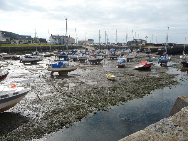 Part of Aberaeron Harbour at low tide