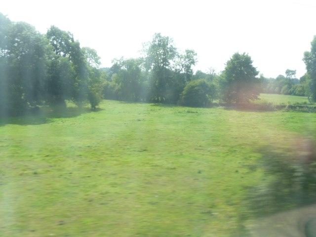 Mole Valley : Grassy Field