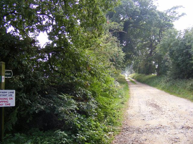 Footpath to the Blythburgh Estuary & Whitehouse Farm Lane